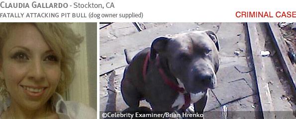Fatal pit bull attack - Claudia Gallardo photo