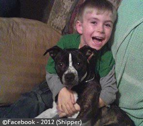 College Springs boy killed by family dogs