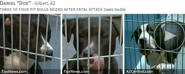 Fatal pit bull attack - Daniel Doe photo