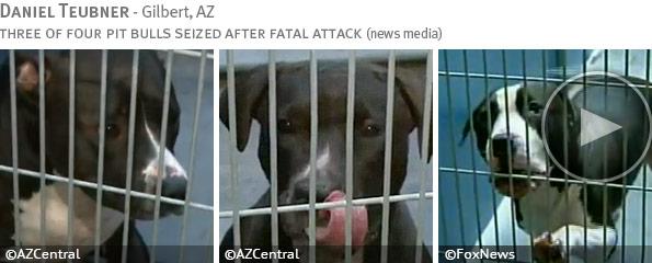 Fatal pit bull attack - Daniel Doe photo