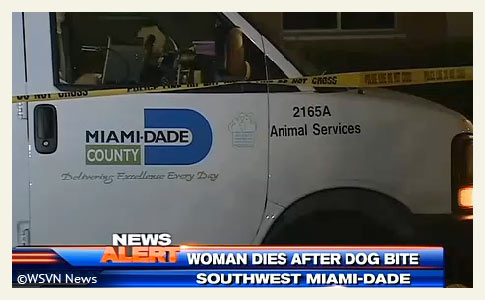 dogs kill woman in southwest Miami-dade