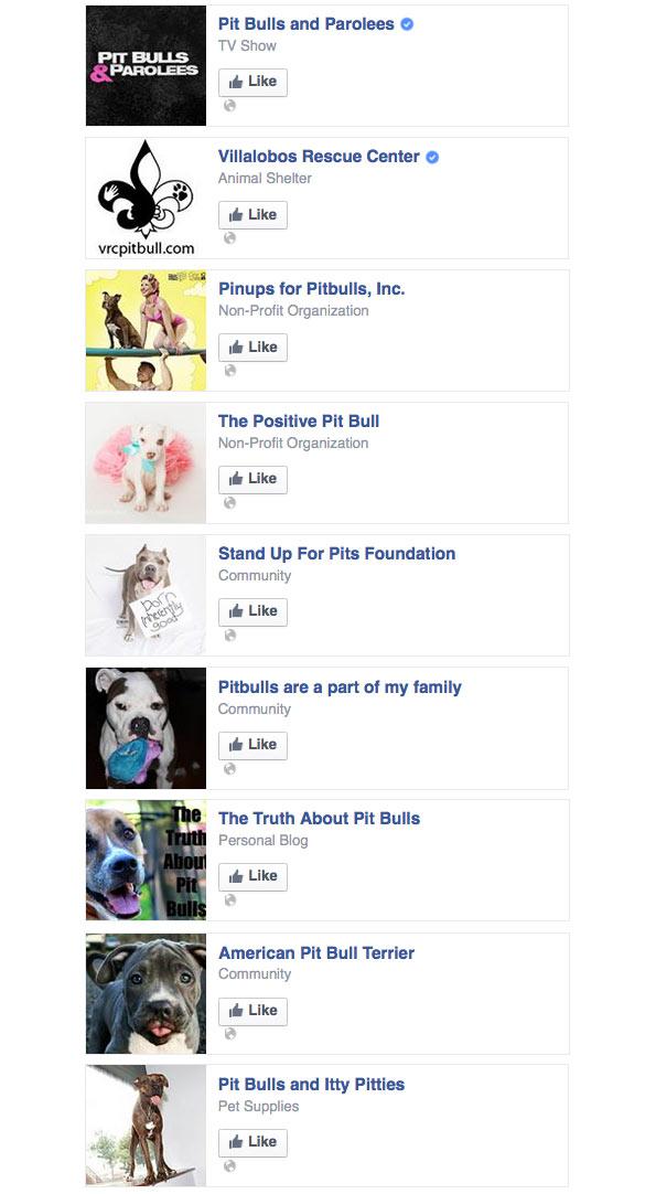 pit bull kills owner in Spartanburg, South Carolina