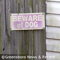 child killed by family pit bull in high point, north carolina