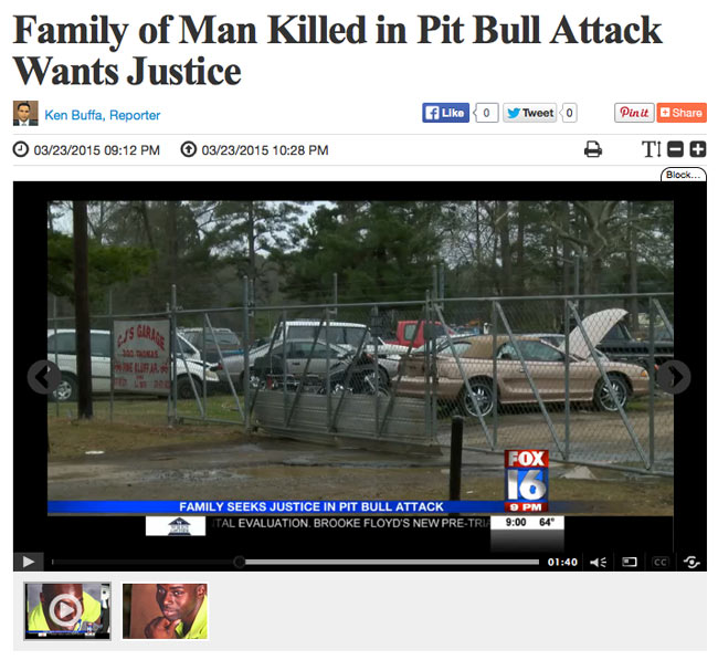 Man Shot Killed By Jefferson County Deputy Outside Auto: 2015 Dog Bite Fatality: Pack Of Pit Bulls Kill Man In