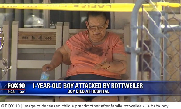 grandmother after family rottweiler destroys baby boy