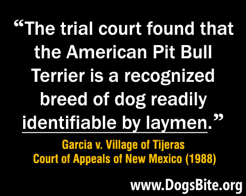 meme, high courts rule a dog owner of ordinary intelligence can identify a pit bull