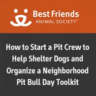 pit bull myth