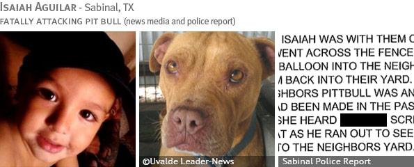 Fatal pit bull attack - Isaiah Aguilar photo