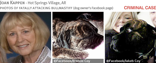 Fatal bullmastiff attack - Joan Kappen photo