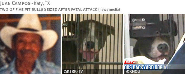 Fatal pit bull attack - Juan Campos photo