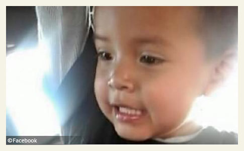 3 year old boy killed by pit bulls navajo nation