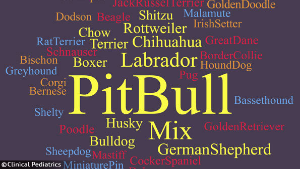 dog bite studies pit bulls higher severity of injury