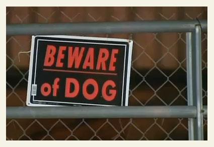 Beware of Pit Bull