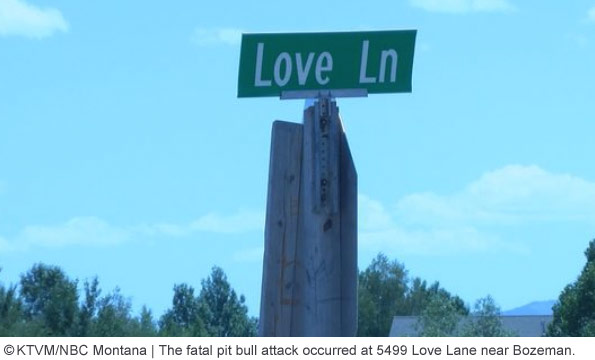 deadly pit bull attack occurred at 5499 Love Lane near Bozeman