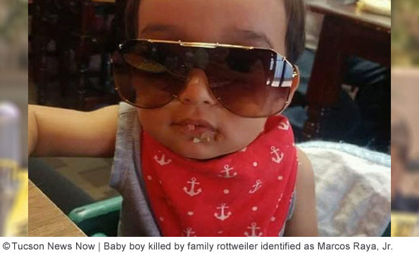 Marcos Raya, Jr. killed by family rottweiler