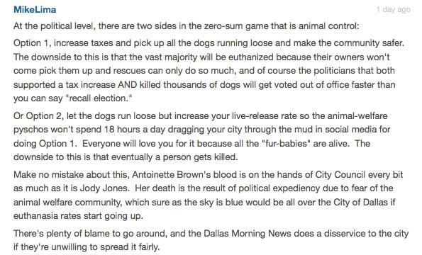 dallas fatal dog attack