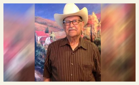 pit bulls kill pecos man, texas
