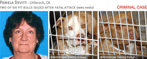 Fatal pit bull attack - Pamela Devitt photo