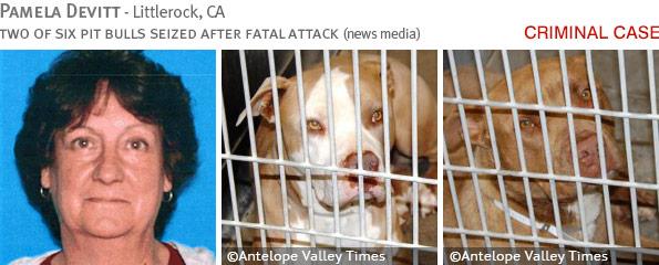 Fatal pit bull attack - Pamela Devitt photo