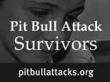 Stories of pit bull attack survivors. Part one in a series of five by DogsBite.org.