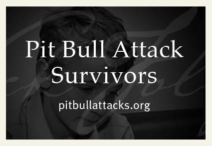 pit bull attack survivors