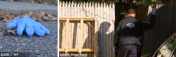pit bull kills girl in long island backyard