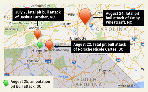 three fatal pit bull attacks, north carolina and upstate south carolina