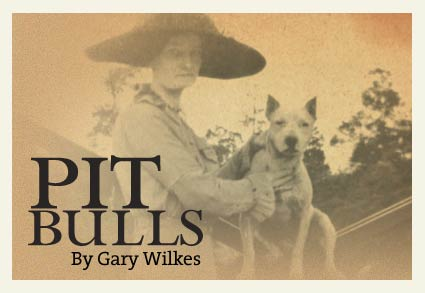 Pit Bulls by Gary Wilkes