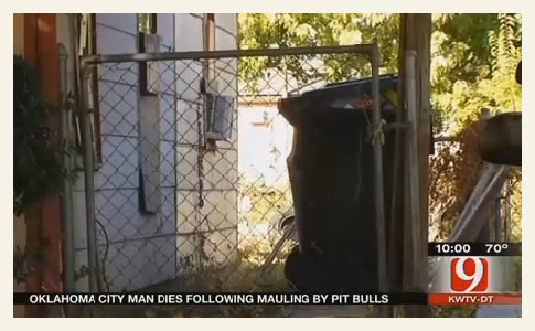 Pit bulls kill oklahoma city man
