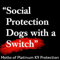 social protection trained dogs with a switch