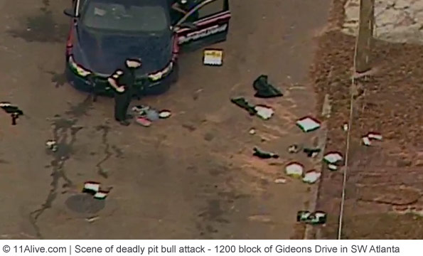 scene of deadly pit bull attack southwest atlanta