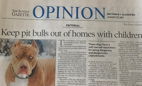 editorial after family pit bull viciously attacks child in Amsterdam, New York
